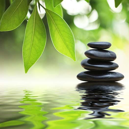 Environmental Consciousnesses